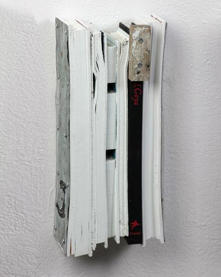 I, Goya, Geschnittene Bücher, Textilien, Zink, Holz, Acryl, 35 x 15 x 7, 2008