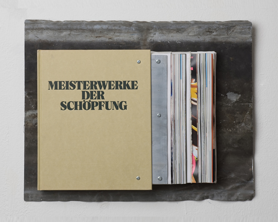 Meisterwerke der Schöpfung, Buch, Zink, Zeitschrift, Leinwand, 49 x 40 x 15, 2008